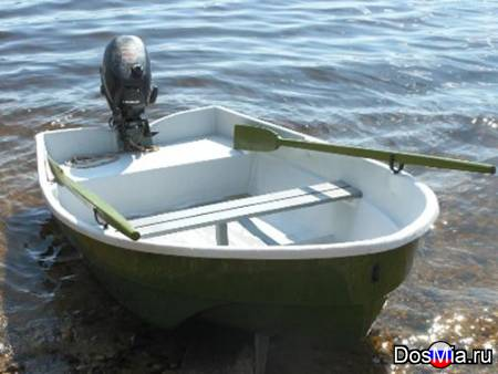 Купить лодку Афалина-255