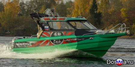 Купить катер (лодку) Berkut Active HT