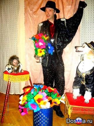 Дрессированные животные на детский праздник