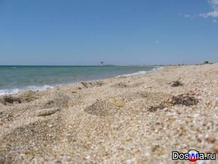 Отдых у моря в Крыму в селе Молочное