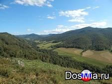 Продам землю сельхозназначения 89 га.