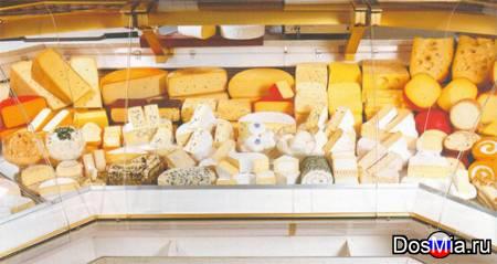 Закупаем оптом сырные и молочные продукты