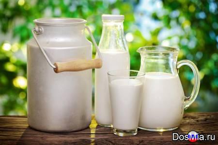Продаем цельное сырое молоко высшего сорта в Москве