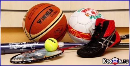 Оптовая торговля спортивными товарами