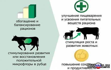 Продается С. У. П. – углеводный пребиотический корм.