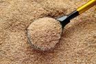 Пшеничная крупа оптом от 20 тонн